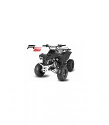 ctyrkolka-atv-big-warrior-125cc-rs-model-automatica